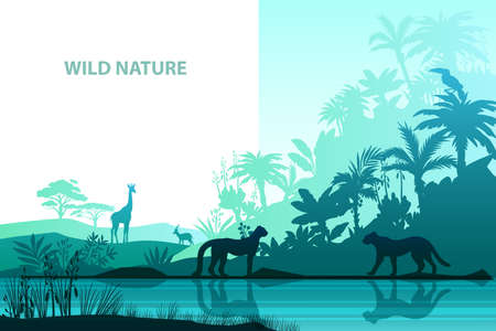 Vector jungle background with giraffe, leopard, toucan, river bank, palm trees. Rainforest stock banner with exotic animals and flora. Tropical landscape in trendy blue colors for landing pages