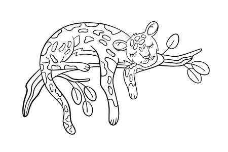 Vector coloring page with cute leopard sleeping on a branch. Kid's coloring book in cartoon doodle style isolated on white. For preschool educational games and materials, nursery posters and prints.