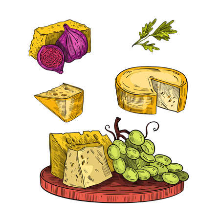 Cheese plate vintage hand drawn illustration with board, camembert, fig, green grape, parmesan. Engraving Italian food collection isolated on white. Ilustração