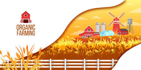Organic farm vector illustration with wheat field, fence, mill, greenhouse, water tower, red village houses. Agriculture rural yellow background in flat style with white copy space for landing pages Illustration