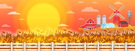 Organic farm vector landscape with wheat field, sun, mill, houses, fence, red sky. Autumn rural illustration with rye, village buildings, barn, greenhouse. Country harvest view in flat style Illustration