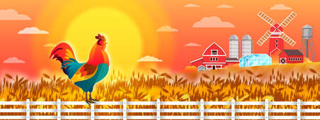 Organic farm landscape with wheat field, cock on fence, red mill, rising sun, village houses. Autumn rural countryside view with rooster, rye, morning sky, clouds. Agriculture background in flat style Illustration