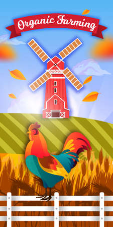 Organic farm illustration with windmill, cock, fence, fields of wheat and barley, leaves, clouds. Agriculture farming flyer in flat cartoon style with red mill, cockerel, sky. Rural vector background