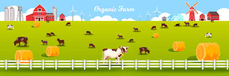 Organic farm vector illustration with grazing livestock, barn, windmill, fence, green meadow, haystacks. Rural farming landscape in flat style with livestock, cows, field, pasture, red village houses