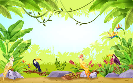 Jungle vector tropical rainforest frame, nature paradise exotic background, toucan, parrot, liana, banana leaf. Summer Hawaii environment wildlife illustration, palm silhouette. Jungle frame, branch