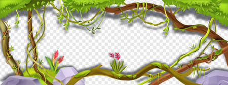 Jungle liana vector green frame, tropical vine branch illustration on transparent background. Paradise plant, green vegetation, exotic flower, stone, moss, tree trunk. Amazon rainforest liana frame Vecteurs