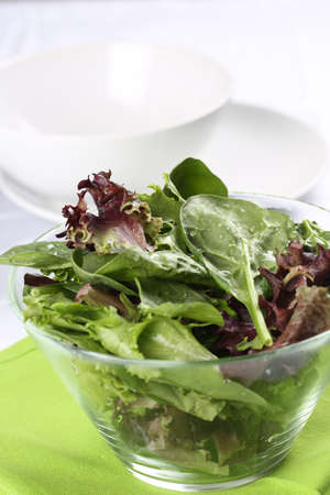 Fresh baby spinach and salad