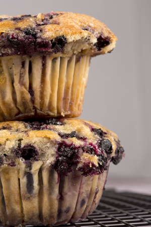 Freshly baked blueberry muffins  Stock Photo - 13608443
