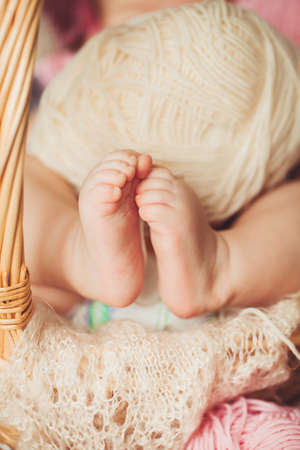 Baby legs  Legs newborn in parents hand  Infant feet  photo