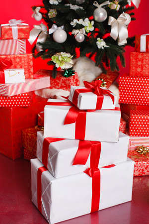 Beautiful gift boxes wrapped with ribbons and bow isolated on red