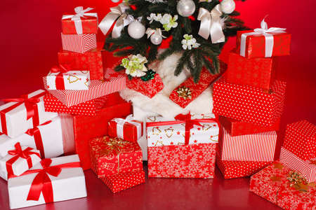 toygift: Beautiful gift boxes wrapped with ribbons and bow isolated on red background Stock Photo