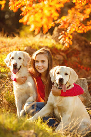 portrait of Beautiful young girl with her dogs labrador retrievers outdoor in autumn beautiful park photo