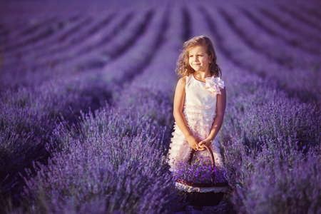 lavender flowers: Smiling girl picking flowers in lilac lavender field