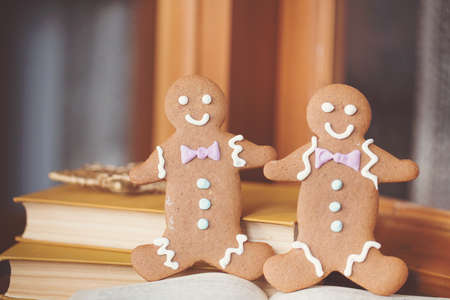 Smiling gingerbread man standing next to open book  Closeup with shallow dof  Copy space included for text  photo