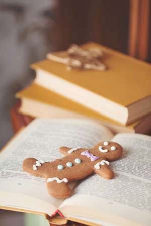 Smiling gingerbread man lying on a book photo