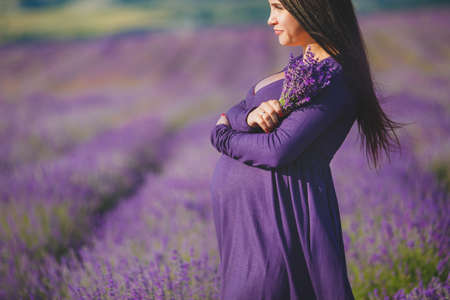 purple floral: long-haired pretty pregnant woman in a lavender field with basket of lavender flowers. Young romantic pregnant woman picks some lavender from purple lavender field. In dress, bouquet of lavender