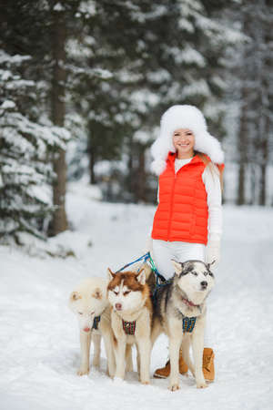 Beautiful husky dog walking with his young mistress in a city park in winter on Christmas Eve. photo