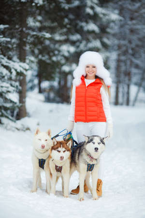 sled dogs: Portrait of a beautiful woman with Siberian huskies - Husky.Beautiful woman with green eyes, white fluffy in winter hat and white pants and red jacket, a light - brown shoes, posing with three husky sled dogs with brown, gray and white color on the backgr