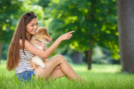 green life: woman beautiful young happy with long dark hair in striped sweater holding collie dog. Young woman playing with Collie puppy outdoors in the park. Stock Photo
