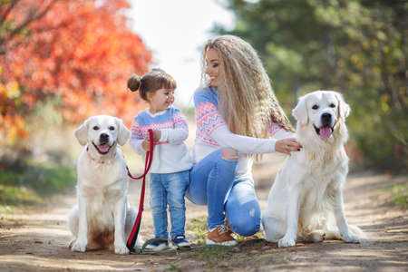 Family portrait of young blonde woman with long wavy hair and her little daughter, mother and daughter dressed in the same blue-white-pink sweater and light blue jeans, walking together with dogs of the breed Golden Retriever in a beautiful autumn Park