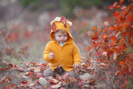 Adorable kid having fun on beautiful autumn day. Happy child playing in autumn park. Kid gathering yellow fall foliage. Autumn activities for children.Portrait of happy little child, baby boy laughing