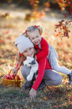 Two cute little girls, an older and younger sister, having fun on beautiful autumn day.Happy children playing in autumn park. Kids gathering yellow fall foliage. Warm autumn for children. Happy girlfriends spend time outdoors in the park in autumn.