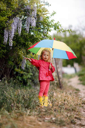 Happy funny beautiful blonde with blue eyes child with rainbow colorful umbrella in the autumn park. Girl kid playing on the nature outdoors. Family walk in the may forest green trees leaves. Girl hiding under a umbrella from spring rain. 版權商用圖片