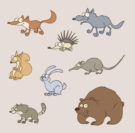 Vector illustration of animals - fox, wolf, bear, hedgehog, rat, squirrel, hare, racoon  Illustration