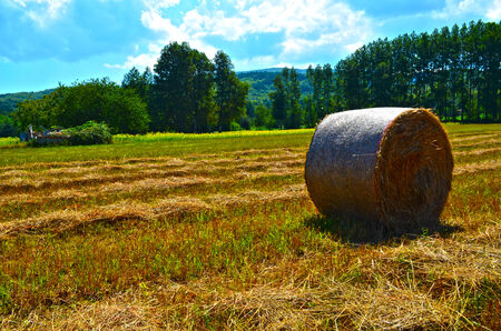 bucolic: BUCOLIC CALABRESE LANDSCAPE, WITH HAY BALE Stock Photo