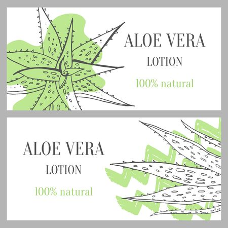 Horizontal banners template with aloe vera plants. Hand drawn sketch vector illustration with green stains on white background