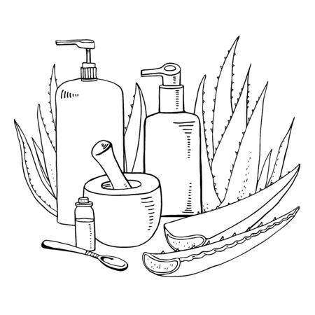 Composition with aloe plants, ponder, pestle and cosmetic tubes. Vector hand drawn outline sketch illustration on white background