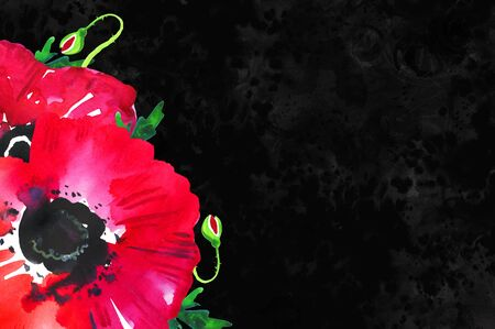 Poppy flower in a corner on black textured background. Remembrance day design concept. Hand drawn watercolor sketch illustration
