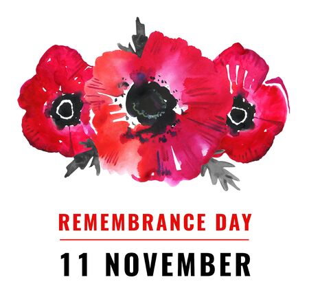 Remembrance day illustration. Poppy flowers and title 11 November. Hand drawn watercolor sketch on white background