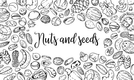 Composition with different nuts and seeds with empty center. Hand drawn outline vector sketch illustration. Black on white background