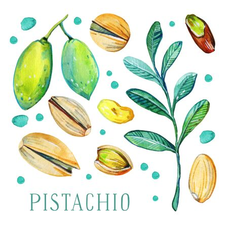 Set of pistachio nuts, leaves and fruits. Hand drawn watercolor illustration. Isolated on white background Banco de Imagens