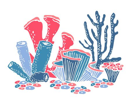 Composition with colorful corals. Hand drawn vector illustration on white background Ilustrace