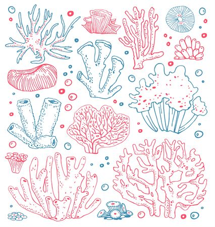Set of different hand drawn sketch corals. Vector outline color illustration on white background