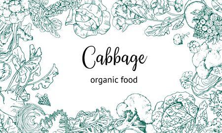 Rectangular frame design template with different cabbage. Hand drawn outline vector sketch illustration. Broccoli, kohlrabi, brussels sprout, kale, romanesco Ilustração