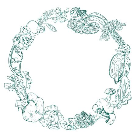 Round frame with different cabbage. Hand drawn outline vector sketch illustration on white background. Romanesco, broccoli, kale, napa, brussels sprout Imagens - 134545903