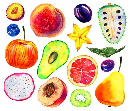Watercolor fruits set. Avocado, pitahaya, pear, apple, citrus, annona, peach, plum, kiwi. Hand drawn illustration isolated on white background