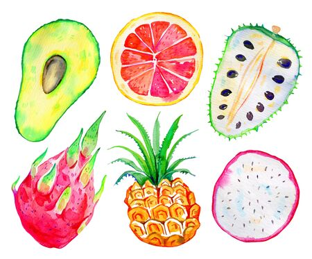 Exotic fruits. Avocado, pitahaya, pineapple, citrus, annona. Hand drawn watercolor set isolated on white background Zdjęcie Seryjne