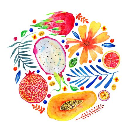 Composition in circle with exotic fruits and decorative flowers. Citrus, pitahaya, pomegranate, papaya. Hand drawn watercolor illustration isolated on white background