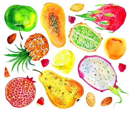 Watercolor fruits, berries and nuts set. Pear, aplle, pitahaya, pineapple, citrus, papaya, pomegranate. Hand drawn illustration isolated on white background