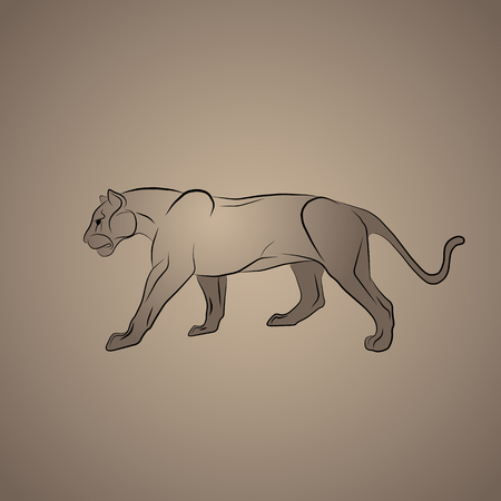 The female lion. Smooth path.