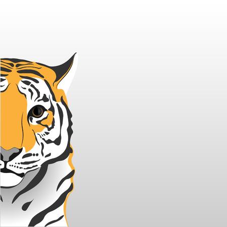 enigmatic: Enigmatic tiger.