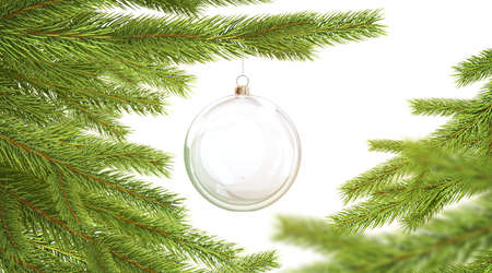 Blank glass christmas ball hanging on pine branch mockup