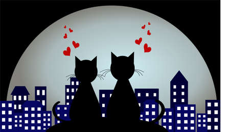 lovers in the background of a night city. Love. loving cats.