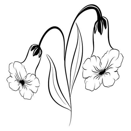 Beautiful silhouette of a flower bell on a white background. Contour drawing. Element for design and decoration. Vector illustration.