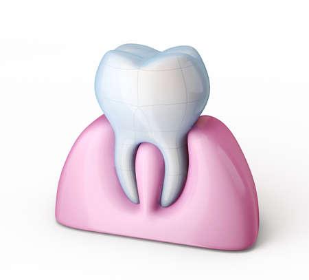 witte tand geïsoleerd op een witte achtergrond Stockfoto