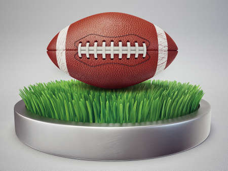 pigskin: conceptual icon. football ball isolated on a grass